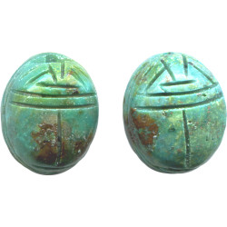 12x16mm Stabilized Chinese Turquoise SCARAB, BEETLE Beads
